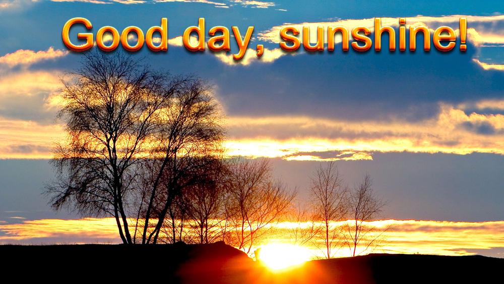 Good Day Sunshine Dailymotion : Good day sunshine