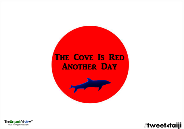 The Cove Is Red Another Day