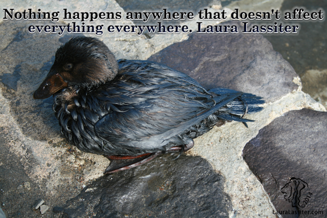 Nothing happens anywhere that doesn't affect everything everywhere -Laura Lassiter