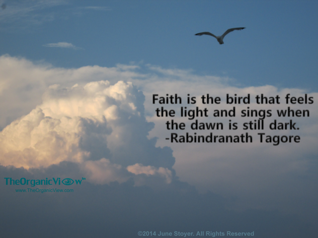 Faith is the bird that feels the light and sings when the dawn is still dark. Rabindranath Tagore
