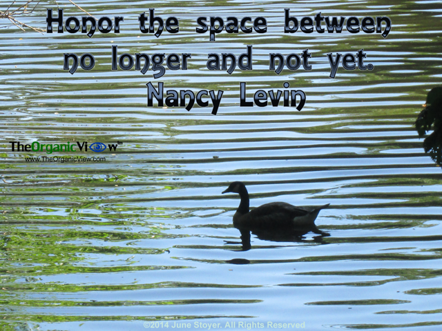 Honor the space between no longer and not yet.Nancy Levin
