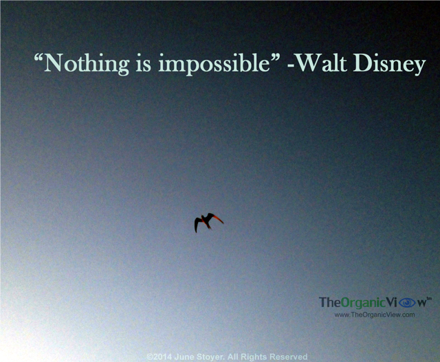 Nothing is impossible! -Walt Disney