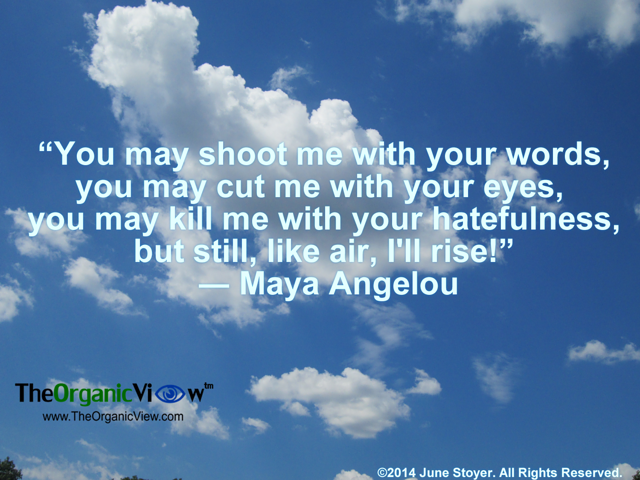 You may shoot me with your words, you may cut me with your eyes Maya Angelou