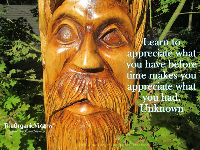 Learn to appreciate what you have before time makes you appreciate what you had Unknown