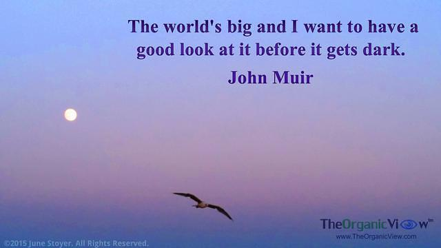 The world's big and I want to have a good look at it before it gets dark. John Muir