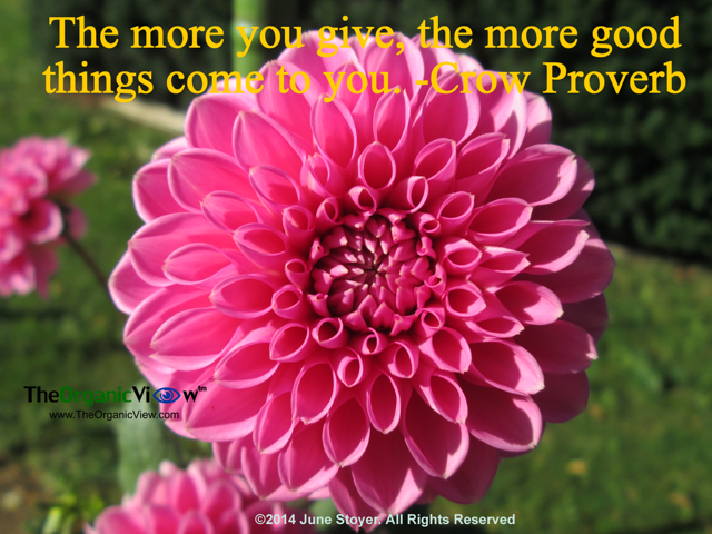 The more you give, the more good things come to you. Crow Proverb