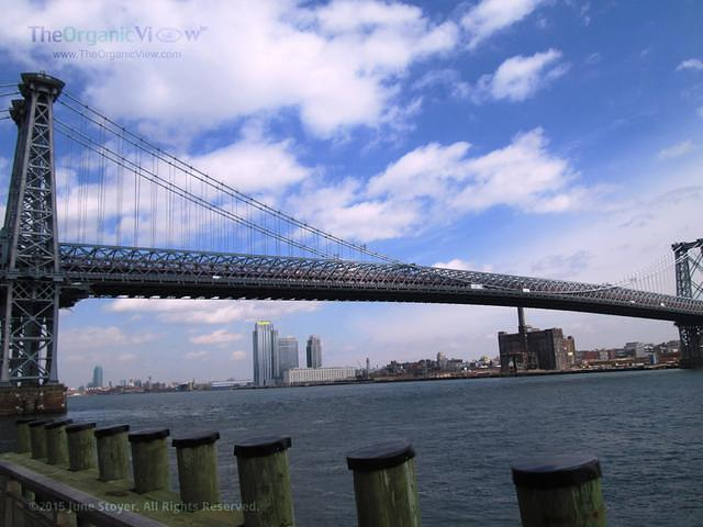 Williamsburg Bridge in NYC waterfront view by June Stoyer