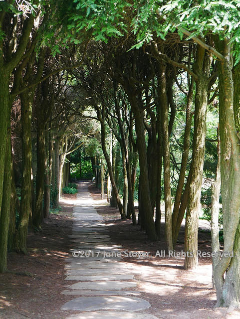The Ghost Walk At Old Westbury Gardens