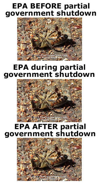 EPA Before, During & After Government Shut Down