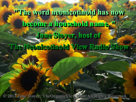 June Stoyer word neonicotinoid