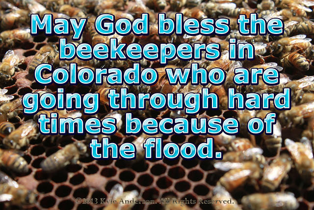 God bless Colorado Beekeepers- June Stoyer