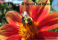 Please #SaveOurBees!
