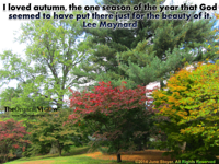 I loved autumn, the one season of the year that God seemed to have put there just for the beauty of it. Lee Maynard