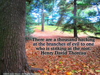 There are a thousand hacking at the branches of evil to one who is striking at the root. Henry David Thoreau