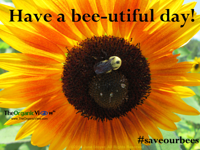 Have a bee-utiful day!