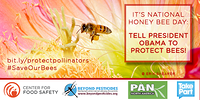 Tell President Obama To Protect Bees!