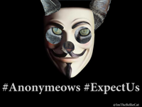 Anonymeows