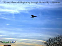 We are all one child spinning through Mother Sky -Shawnee