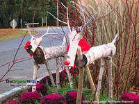 Wooden Reindeer at Planting Fields Arboretum. Photo by June Stoyer