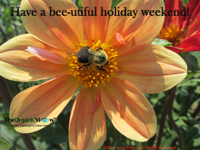 Have a bee-utiful holiday weekend
