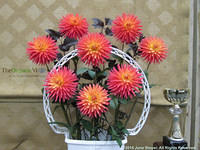 Winning basket at dahlia competition