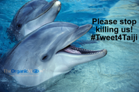 Please stop killing us! #Tweet4Taiji