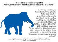 Please stop poaching for profit. Ask Gov Christie to ban NJ ivory & save elephants