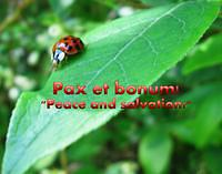 Pax et bonum. Photo by June Stoyer