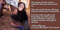 The animals of God's creation inhabit the skies, the earth, and the sea Order of the blessing for animals