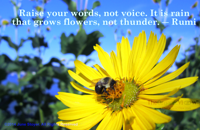 Raise your words, not voice. It is rain that grows flowers, not thunder. Rumi