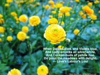 When Daisies pied, and Violets blue, And Lady-smocks all silver-white, And Cuckoo-buds of yellow hue Shakespeare