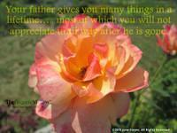 Your father gives you many things in a lifetime….. most of which you will not appreciate until way after he is gone.