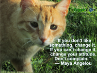 If you dont like something, change it. If you cant change it, change your attitude Maya Angelou