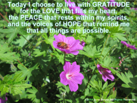 Today I choose to live with GRATITUDE