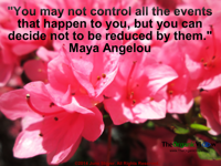 You may not control all the events that happen to you, but you can decide not to be reduced by them Maya Angelou