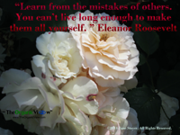 Learn from the mistakes of others. You can't live long enough to make them all yourself