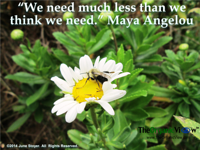 We need much less than we think we need Maya Angelou