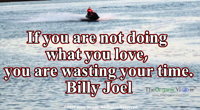 If you are not doing what you love, you are wasting your time. Billy Joel