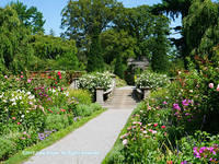 Old Westbury Gardens - Walled Garden - Path 2