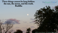 Three things cannot be long hidden the sun, the moon, and the truth Buddha