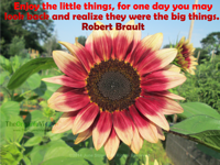 Enjoy the little things, for one day you may look back and realize they were the big things. Robert Brault