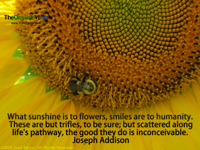 What sunshine is to flowers, smiles are to humanity. Joseph Addison