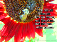 Yeah we all shine on, like the moon and the stars and the sun John Lennon