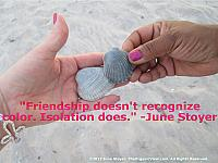 Friendship doesn't recognize color. Isolation does. - June Stoyer