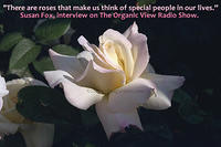 There are roses that make us think of special people in our lives